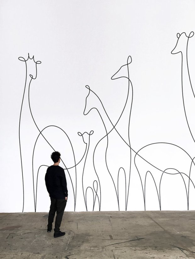 dft giraffes